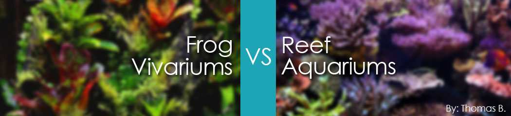 Header Reefs Vs Vivs